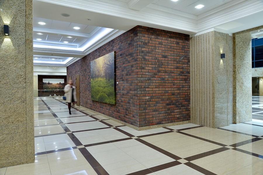 Холл «Сириус Парка» украсили художественные фотографии