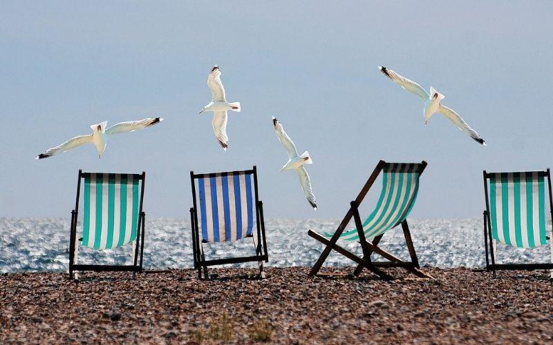 Арендные каникулы. «Сириус Парк» поясняет